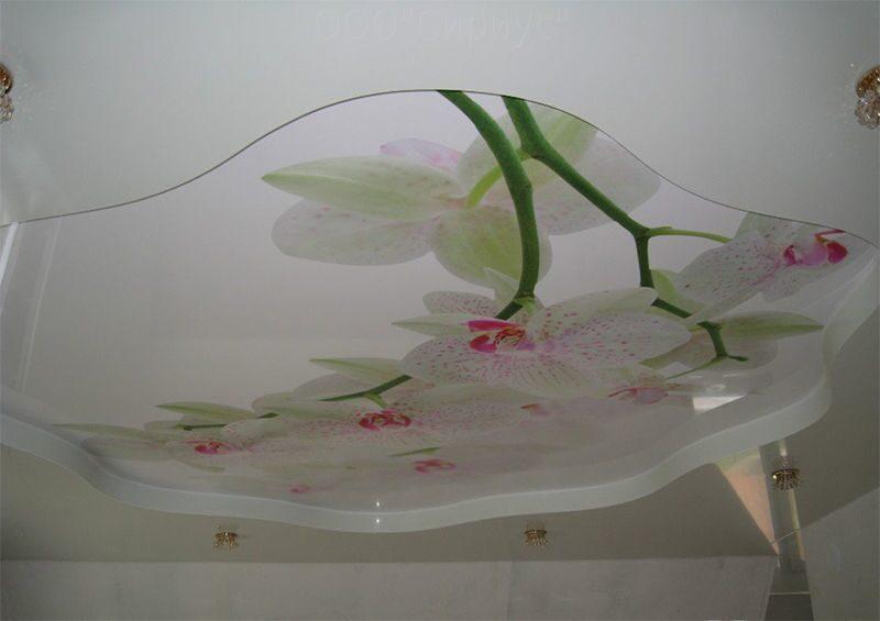 Копчёное сало в домашних условиях с луковой шелухой